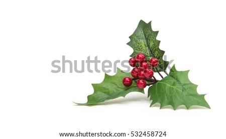 hristmas holiday holly decoration isolated on white background Foto stock ©