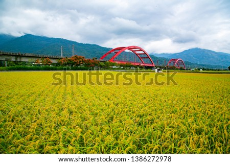 """Hualien village and train scenery in eastern Taiwan, the Chinese characters on the bridge are: """"Hualien No. 1 Bridge and No. 2 Bridge"""" #1386272978"""