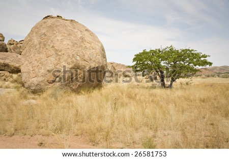 Huge boulder in Damaraland, Republic of Namibia, Africa. Look close in the shadow under the tree: we are beeing observed!