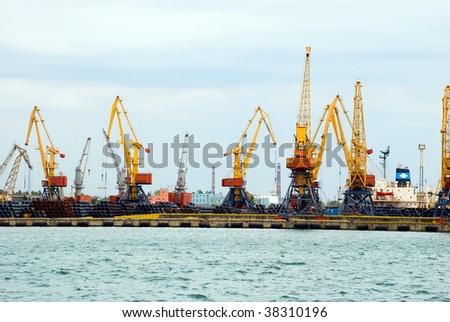 Huge cargo port cranes unload cargoes