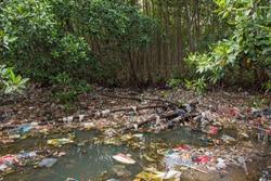 Huge Dump in Tropical Mangrove Tree Forest. Plastic Waste Rubbish Floating in Lake Water. Environmental Pollution Ecological Problem Concept. Bali, Indonesia.
