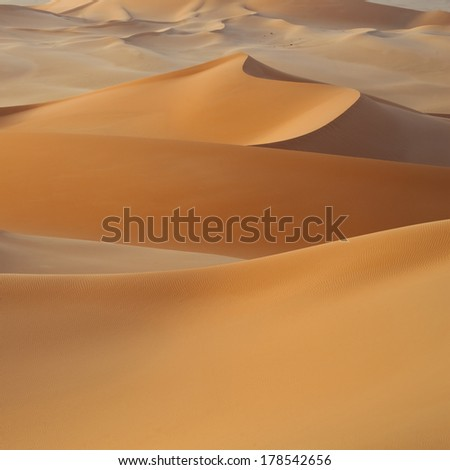 Huge dunes of the desert. Fine place for photographers and travelers. Beautiful structures of sandy barkhans. #178542656