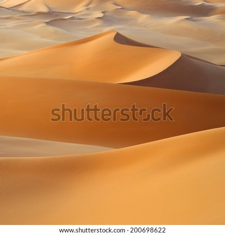 Huge dunes of the desert. Fine place for photographers and travelers. Beautiful structures of sandy barkhans. #200698622