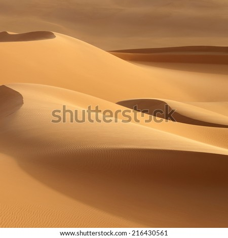 Huge dunes of the desert. Fine place for photographers and travelers. Beautiful structures of sandy barkhans #216430561