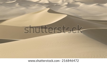 Huge dunes of the desert. Fine place for photographers and travelers. Beautiful structures of sandy barkhans. Background for design and creativity.