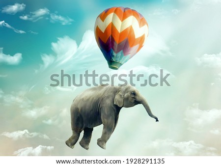 Huge Elephant floating or flying with air balloon with sky and clouds background. Fantastic surreal fantasy phantasmagoric illustration. Freedom concept. Imagination. Surrealism. Dream