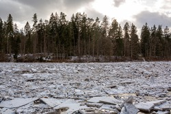 Huge ice loads into the river Ogre in March 2021 with trees in background in Ogre in Latvia