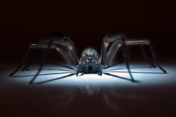 huge poisonous spider hiding in ambush
