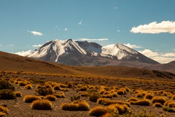 Huge Snow Capped Mountain in Dry Desert with several Grass Patches and Rocky Ground