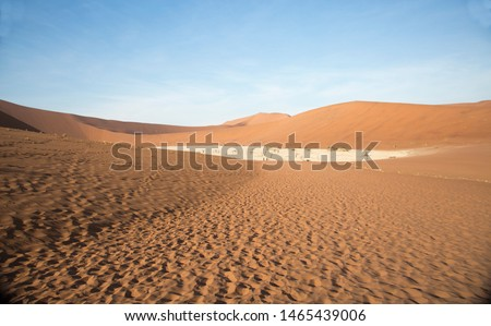 Huge solitude  crossing of the  vastness desert in the colorful and illuminated desert in Namibia #1465439006