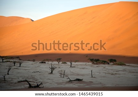Huge solitude  crossing of the  vastness desert in the colorful and illuminated desert in Namibia #1465439015