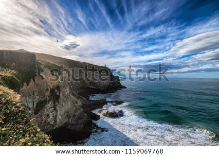 Huge steep drop cliff along the coastline of South Island in New Zealand. One thi s photo, one can see incredible landscape formation shaped by forces of nature. It is breathtaking and dangerous.