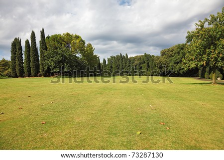Huge yellowed field in a luxurious Italian park-garden Sigurta