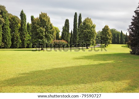 Huge yellowed field in a luxurious Italian park-garden Sigurta around Verona