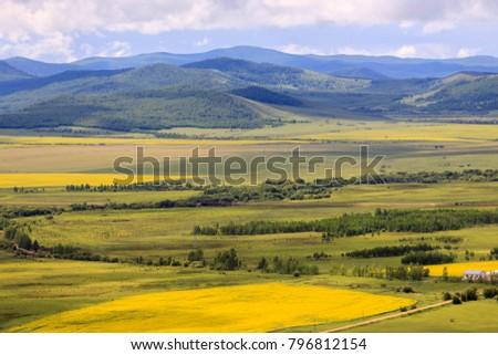 Hulunbuir Grasslands near Enhe, China #796812154