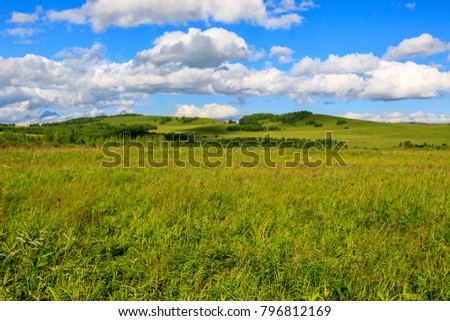 Hulunbuir Grasslands near Enhe, China #796812169