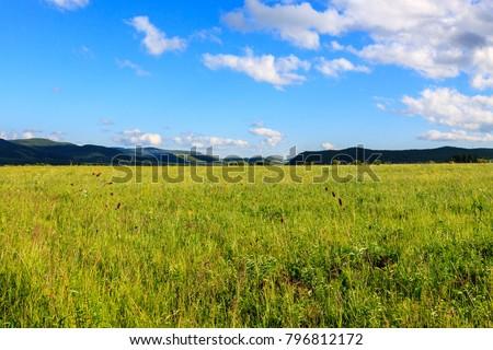 Hulunbuir Grasslands near Enhe, China #796812172
