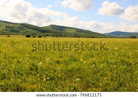Hulunbuir Grasslands near Enhe, China #796812175