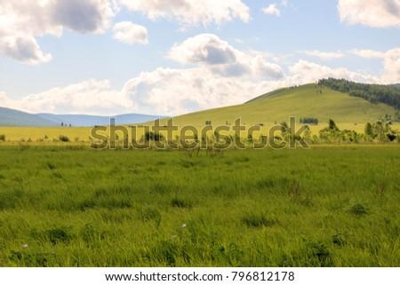 Hulunbuir Grasslands near Enhe, China #796812178