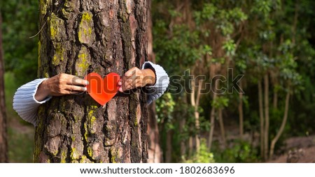 Human arms hugging a tree trunk in the woods holding a paper heart in their hands, earth day concept. An elderly person is hiding behind the tree. People save the planet from deforestation