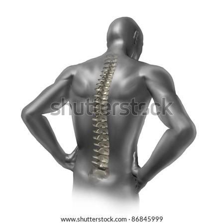 Human back pain showing the spinal cord skeleton inside the patients anatomical body.