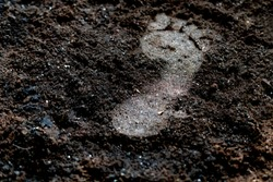 human bare foot step print on the soil ground