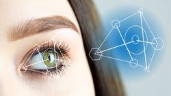 Human biometric characteristics, retinal image. A closeup of a female green