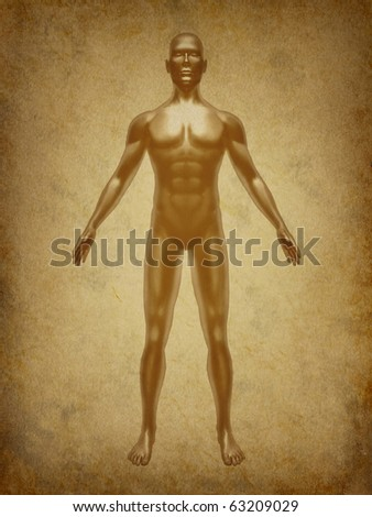Human body medical x-ray pose chart joints muscles  symbol  ancient grunge old medical parchment