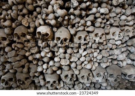 human bones and skulls in ossuary closeup
