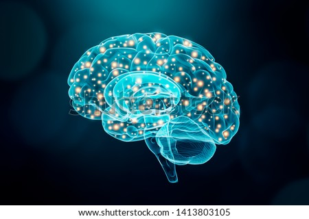 Human brain. Cerebral or neuronal activity concept. Science, cognition, psychology, memory, learning conceptual illustration.