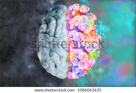 Human brain illustration on top view with monochrome left and full flower right in watercolor style on dark and colorful background
