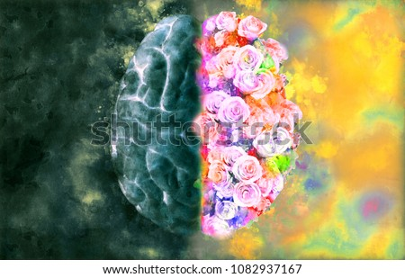 Human brain illustration on top view with monochrome left and full roses right in watercolor style on dark and colorful background