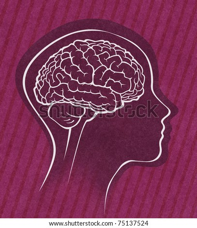 human brain medical schematic simplified