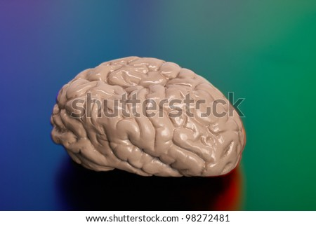 Human brain on colorful background