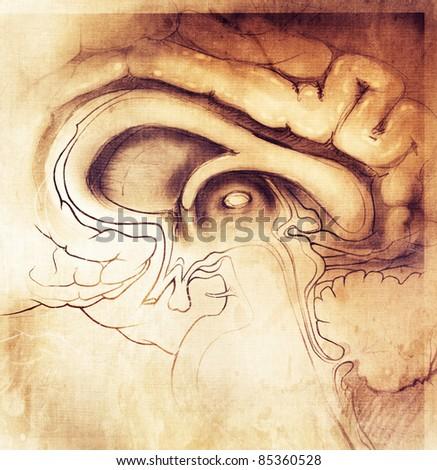 human brain stylized artistic style - painting