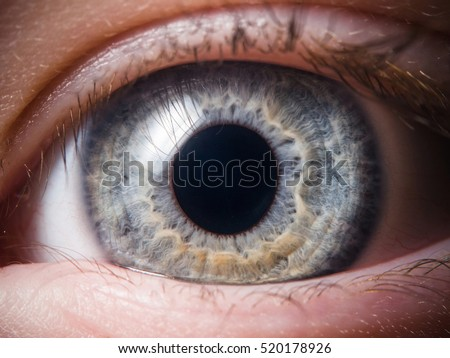 Human eye close-up - Shutterstock ID 520178926