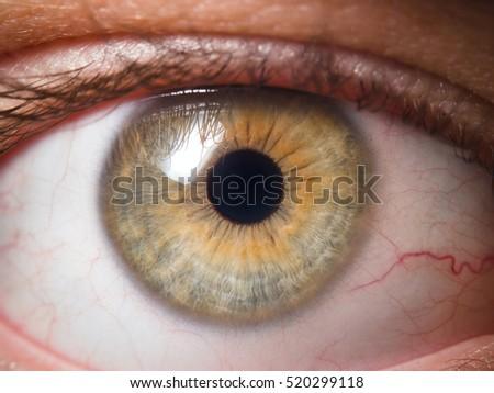 Human eye close-up - Shutterstock ID 520299118
