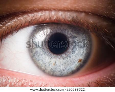 Human eye close-up - Shutterstock ID 520299322