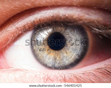 human eye close up - Shutterstock ID 546401425