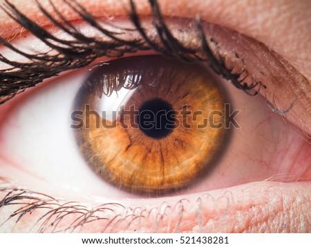 Shutterstock Human eye close-up detail