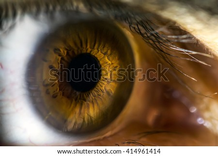human eye close up. Perfect background for a text - Shutterstock ID 414961414