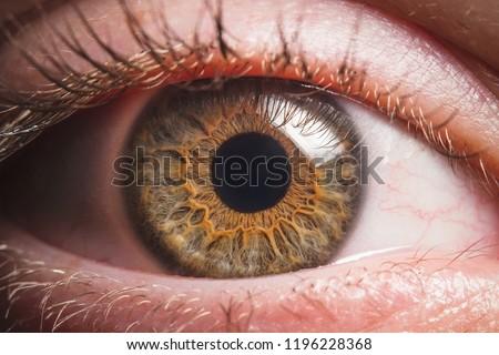 Human eye detail
