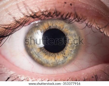 Human eye detail - Shutterstock ID 353377916