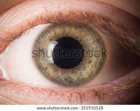 Human eye detail - Shutterstock ID 355910528
