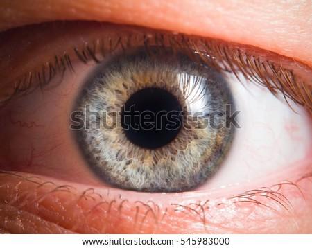 Human eye detail - Shutterstock ID 545983000