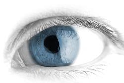 Human eye. macro