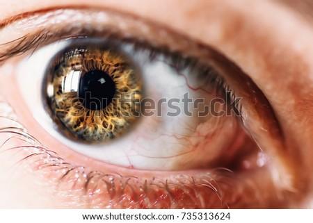 Human eye macro, selective focus on eyeball, fearful or surprised glance concept #735313624
