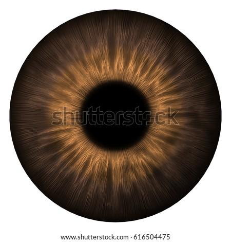 Human eye texture