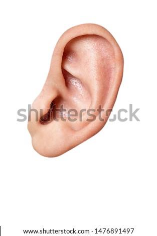 human face  ear detail  close-up macro shot #1476891497