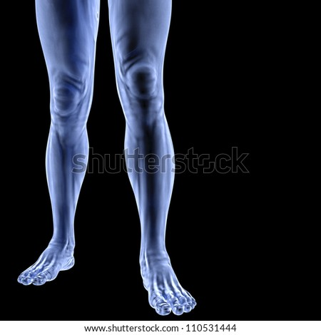 Human feet under X-rays. isolated on black.